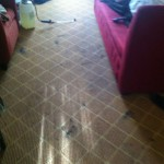 Los Gatos-Carpet-Clean-before