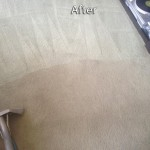 Los Gatos-Carpet-Cleaning-Company