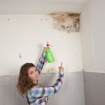 Los Gatos-Mold-Remediation