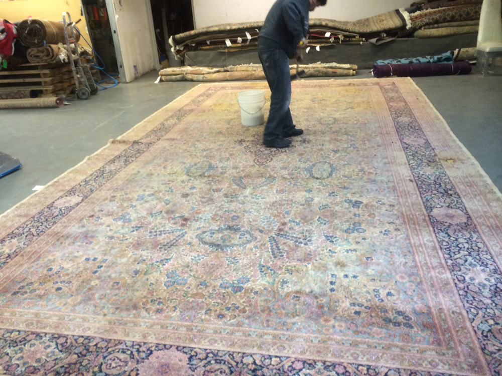 Professional Area Rug Cleaning Home Decor