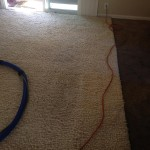 Los Gatos-Traffic-Area-carpet-cleaners