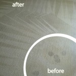 Los Gatos-Wine-Stain-Carpet-Cleaning