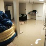 Los Gatosbasement-flood-damage-repair