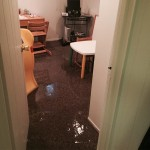 Los Gatosoffice-room-flood-damage-repair
